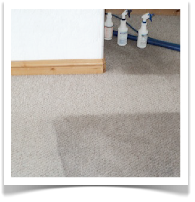 Carpet Cleaning Photo