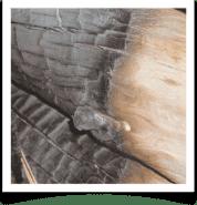 Restauración de daño por incendio