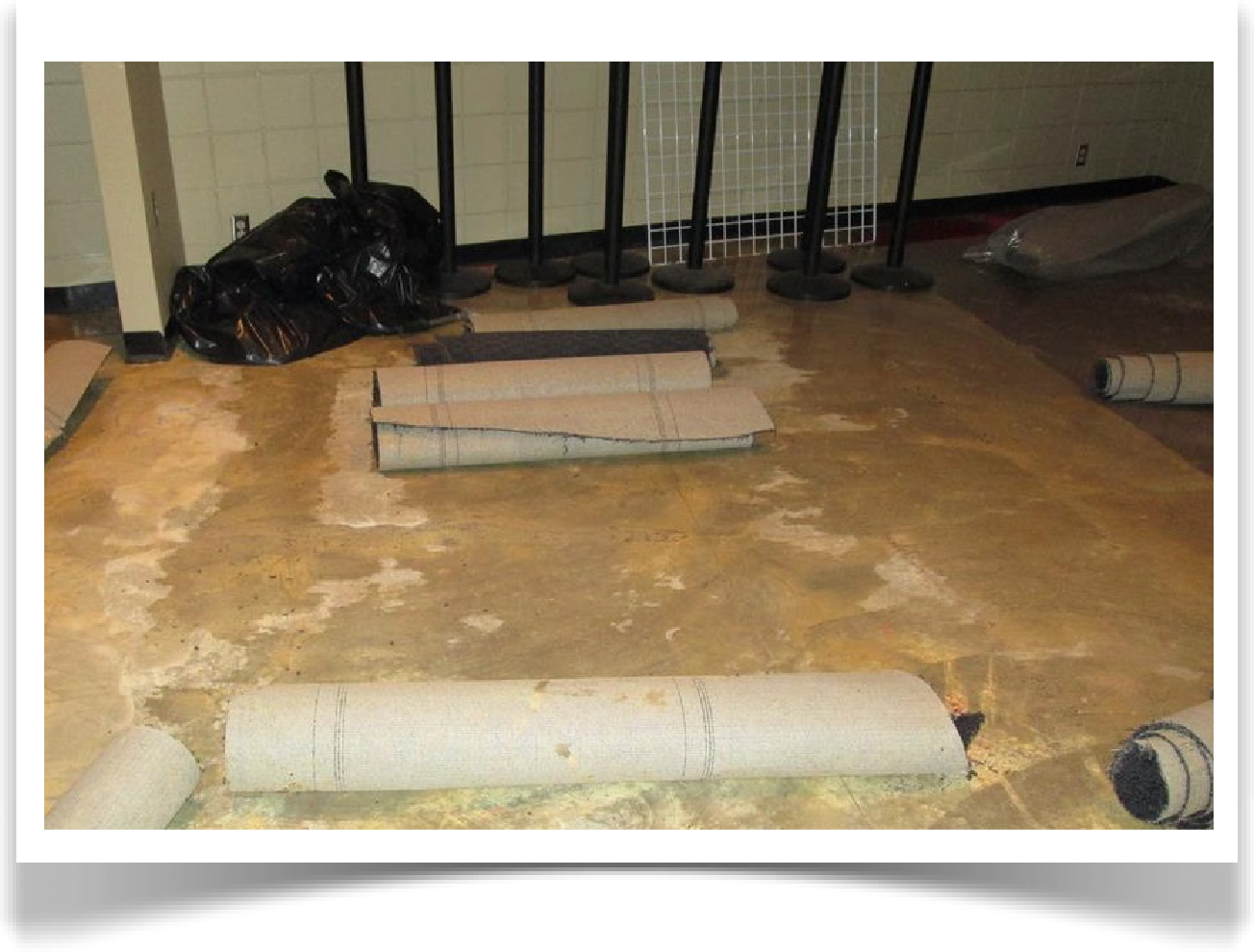 Sewer Damage Restoration