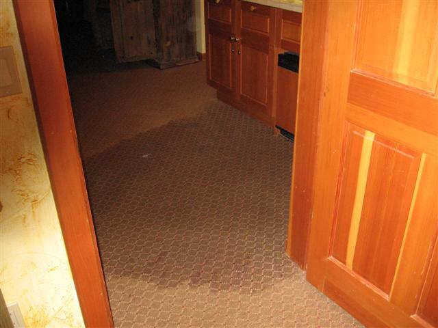 Water Damage on carpet
