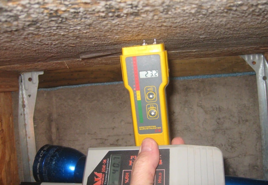 Mold_inspection